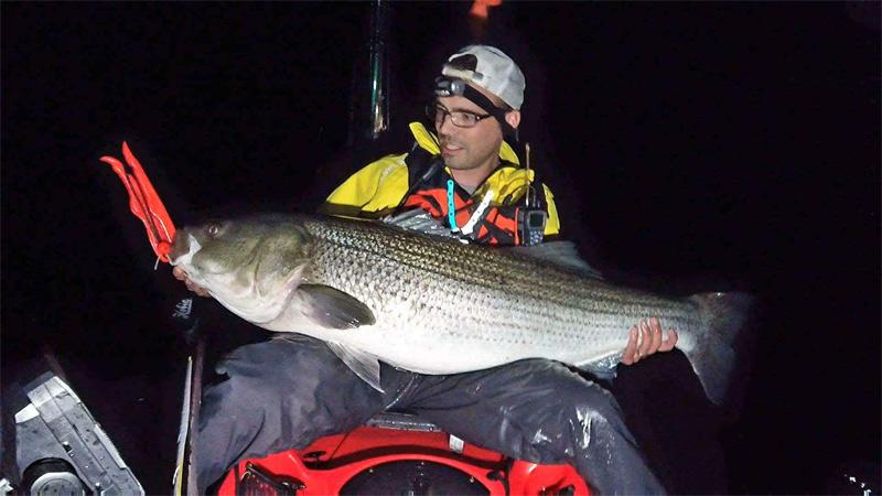 http://www.ctfisherman.com/17pics/drock-striper.jpg