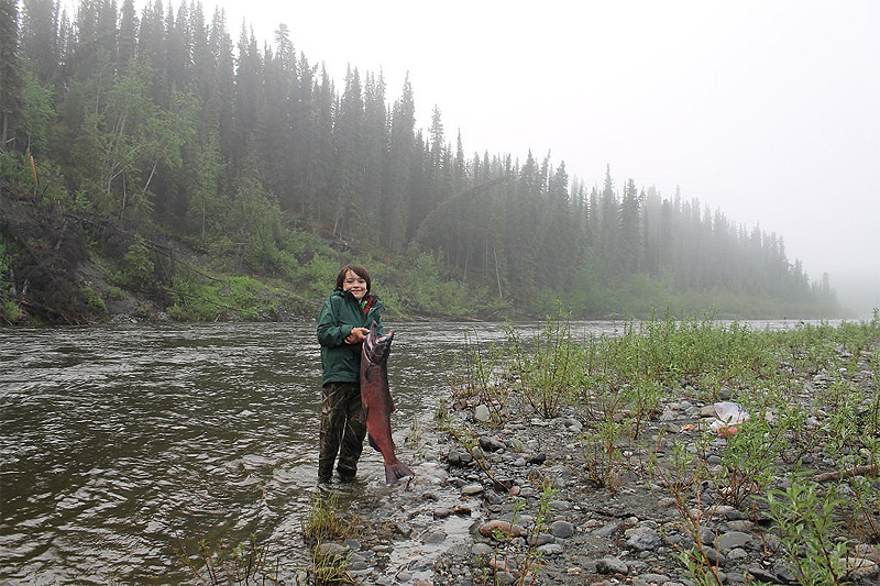 http://www.ctfisherman.com/18pics/gus-salmon.jpg