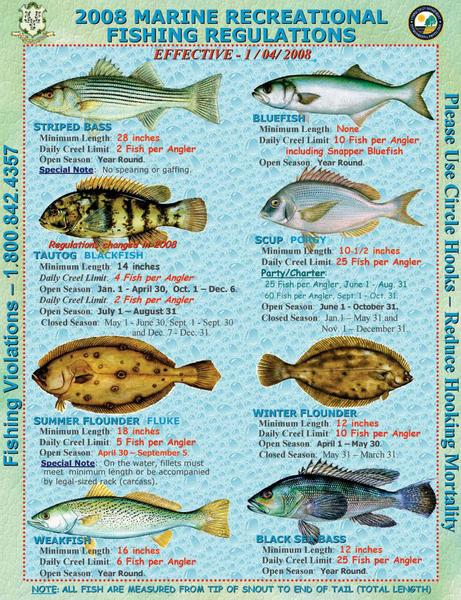 2008 marine regulations effective 1 4 08 ct dep news for Age requirement for fishing license