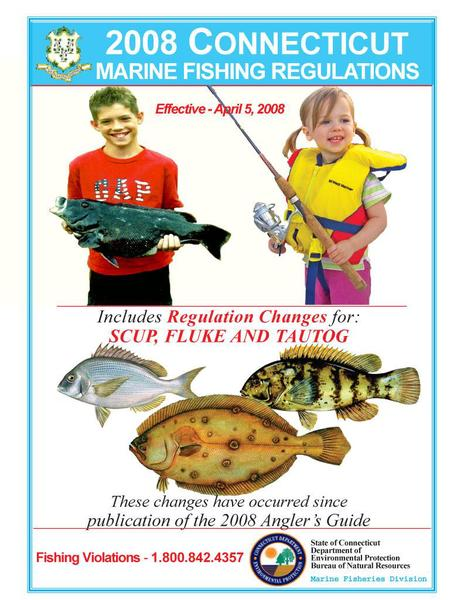2008 marine regulations effective 1 4 08 ct dep news for Ct fishing license online