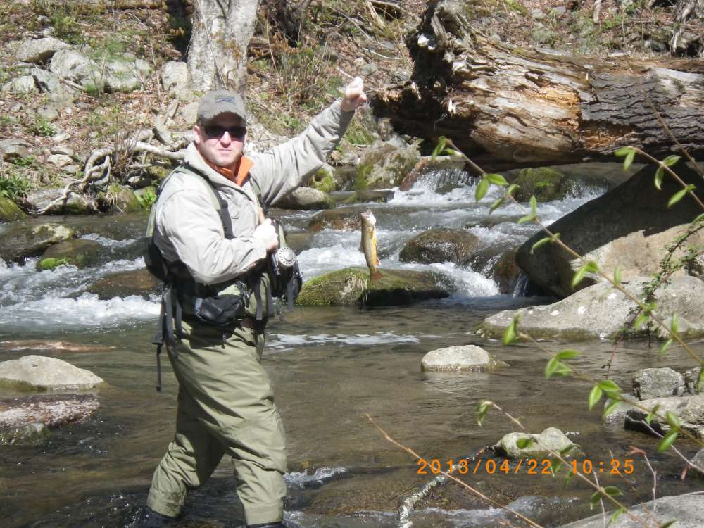 Shenandoah national park virginia out of state reports for Shenandoah national park fishing