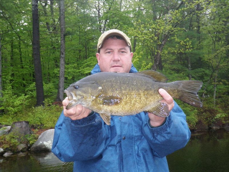2011 ctf maine bassin 39 out of state reports for Maine state fish