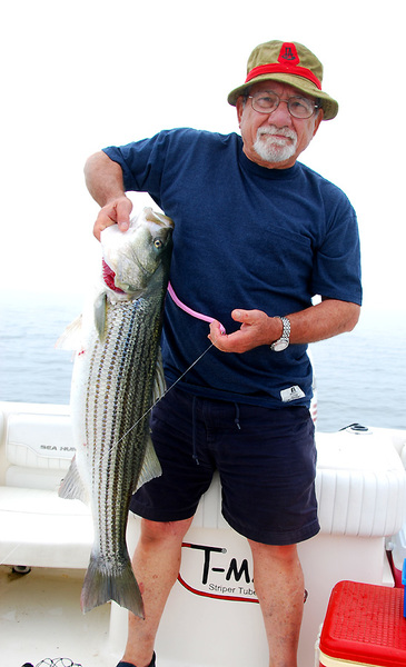 In the zone saltwater reports for Ct saltwater fishing report
