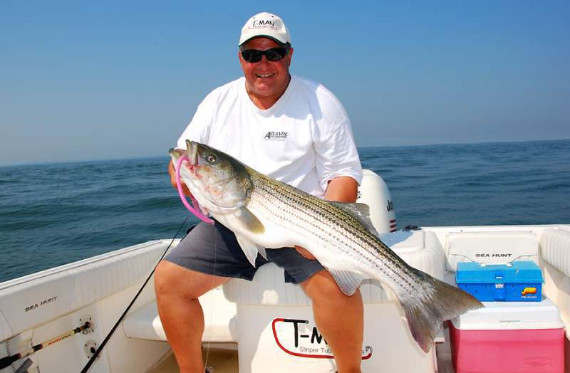 Fun fillets in ct saltwater fishing discussion board for Ct saltwater fishing report