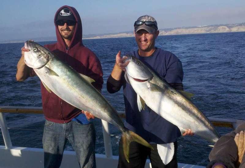 La jolla fishing trips 6 and 7 yellowtail madness for La jolla fishing