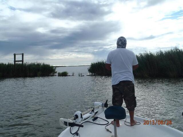 Blitzing flounder pensacola fishing forum for Pensacola party boat fishing