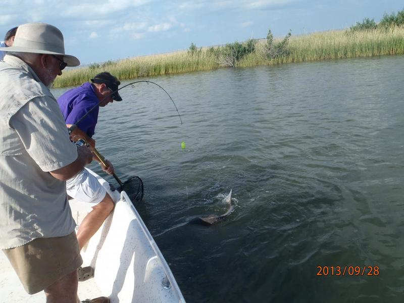 Inshore saltwater fishing reports back at it for Ct saltwater fishing report