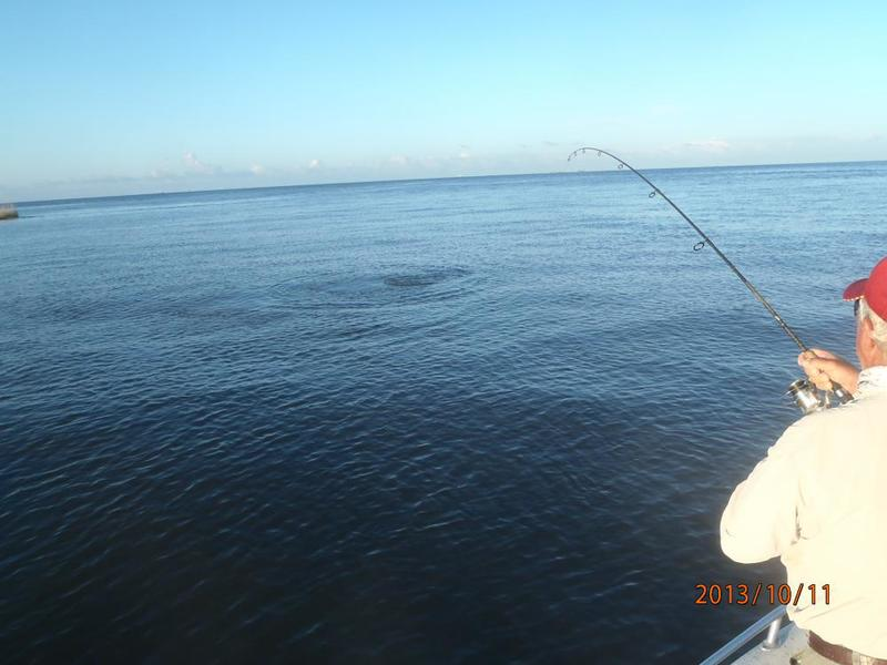 Inshore saltwater fishing reports request for bull reds for Ct saltwater fishing report