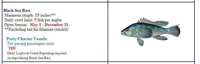 2016 marine regulations ct dep law enforcement for Ct saltwater fishing regulations